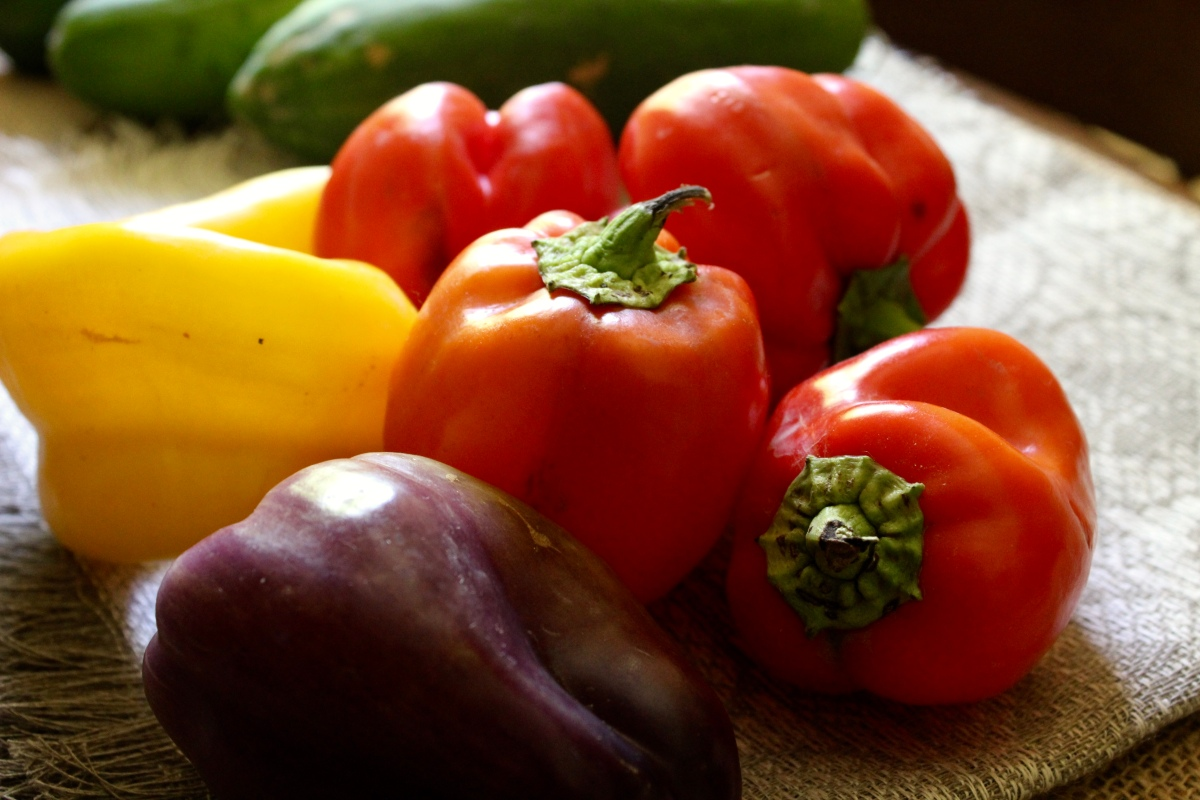 Farmers Markets: Save money on Organic Local food